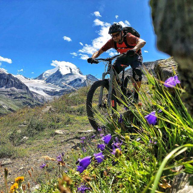 because we're loving it like this! #ridewithguide #marczauggbike #alps #mountains #swissalps #swissmountains #switzerland #valais #wallis #ridevs #mtb #wallisgimpft #mountainbike #mtbswitzerland #mtbenduro #enduromtb  #santacruzbikeswitzerland #rideonscott #flowertrail #weisshorn  #lifebehindbars #august2019